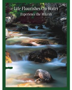 Wall Poster: Experience the Mikvah